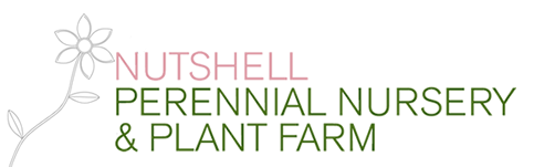 Nutshell Perennial Nursery & Plant Farm